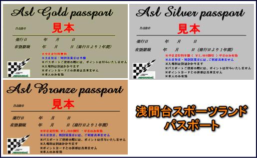 2010passport